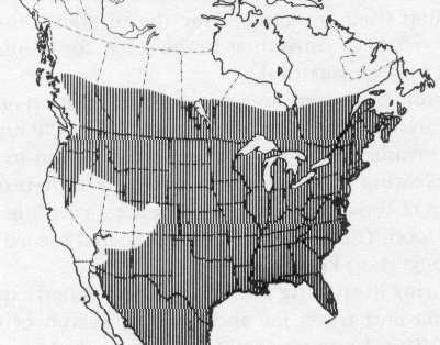 Range of White-tailed deer